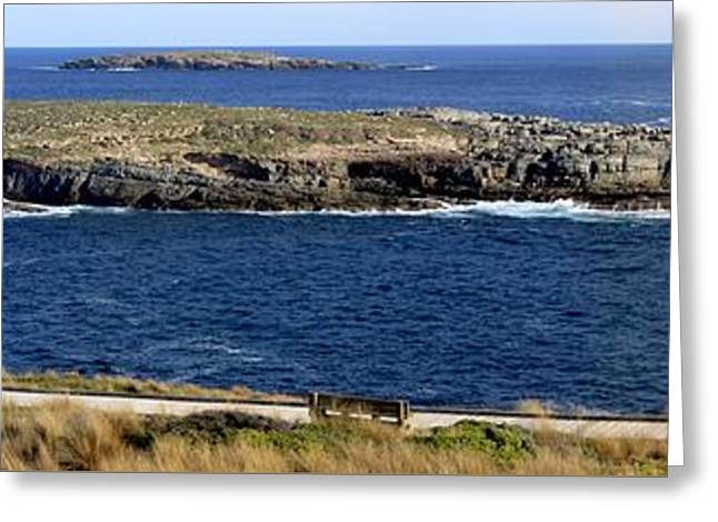 Greeting Card featuring the photograph Casuarina Islets by Stephen Mitchell