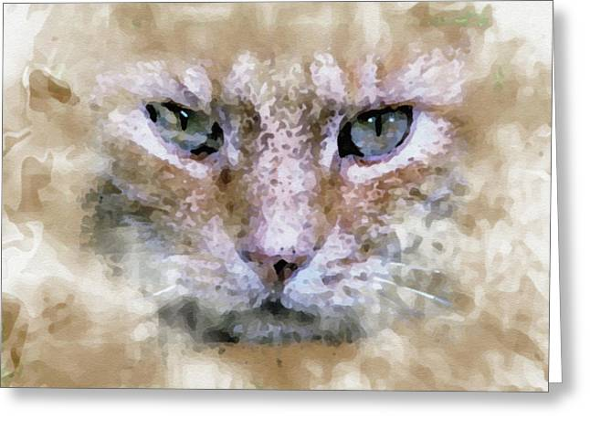 Cat Art Greeting Card by Ralph Klein