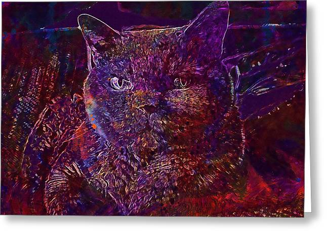 Greeting Card featuring the digital art Cat Cat S Eyes Eye Animal Pet  by PixBreak Art