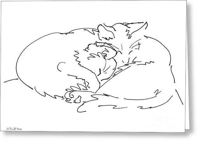 Gordon Punt Greeting Cards - Cat Drawings 2 Greeting Card by Gordon Punt