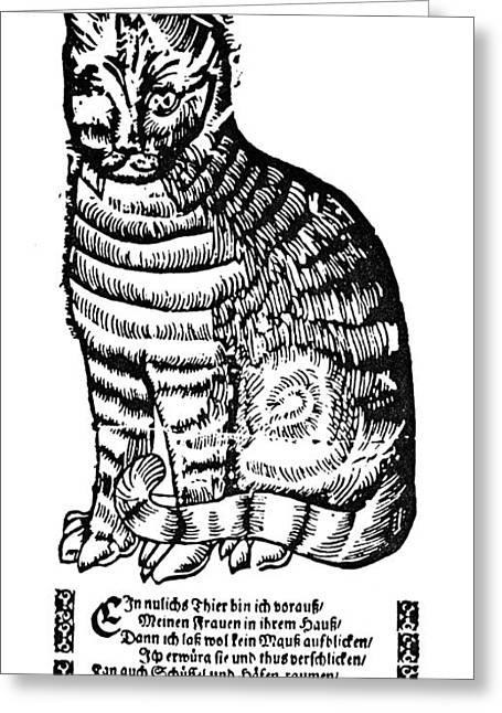 CAT Greeting Card by Granger