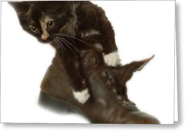 Cat In Boot Greeting Card