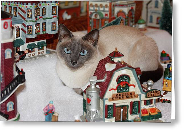 Cat In Christmas Village Greeting Card by Sally Weigand