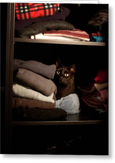 Greeting Card featuring the photograph Cat In The Closet by Laura Melis