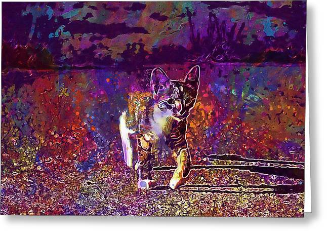 Greeting Card featuring the digital art Cat Kitten Cat Baby Mackerel  by PixBreak Art