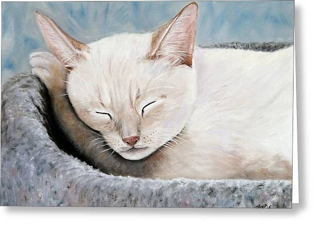 Cat Nap Greeting Card by Merle Blair
