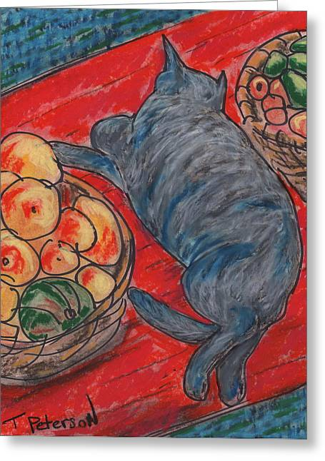 Cat Nap Greeting Card by Todd  Peterson
