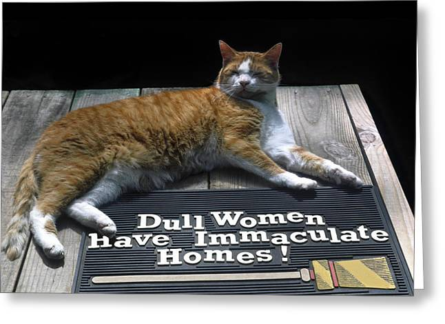 Greeting Card featuring the photograph Cat On Dull Women Mat by Sally Weigand