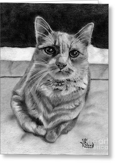 Cat On The Bed Greeting Card by Tracy Dupuis Roland