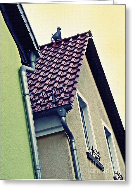 Cat On The Roof Greeting Card by Sarah Loft