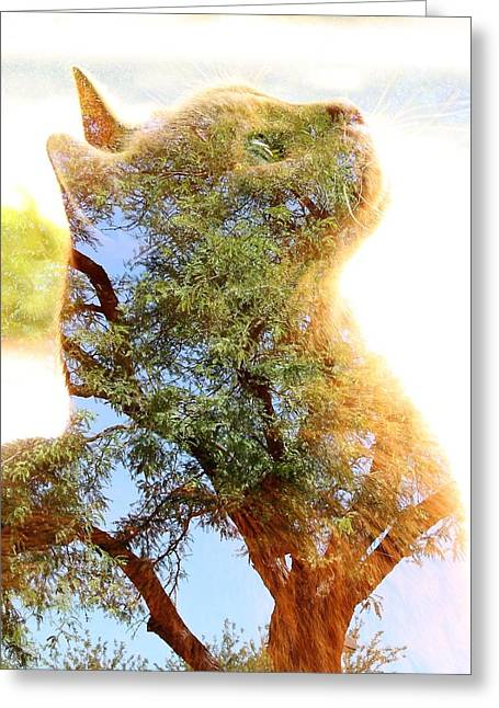 Cat Or Tree Greeting Card