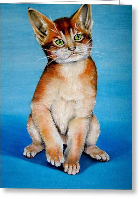 Cat Original Oil Painting Greeting Card by Natalja Picugina