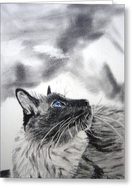 Blur Drawings Greeting Cards - Cat Greeting Card by Ramon Martinez sanmarti