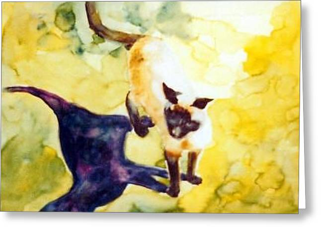 Cat Shadows Greeting Card by Helen Hickey