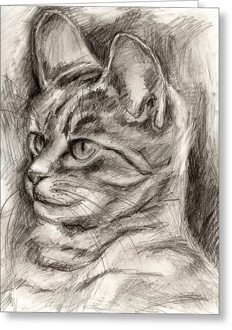 Cat Study Drawing No Three Greeting Card