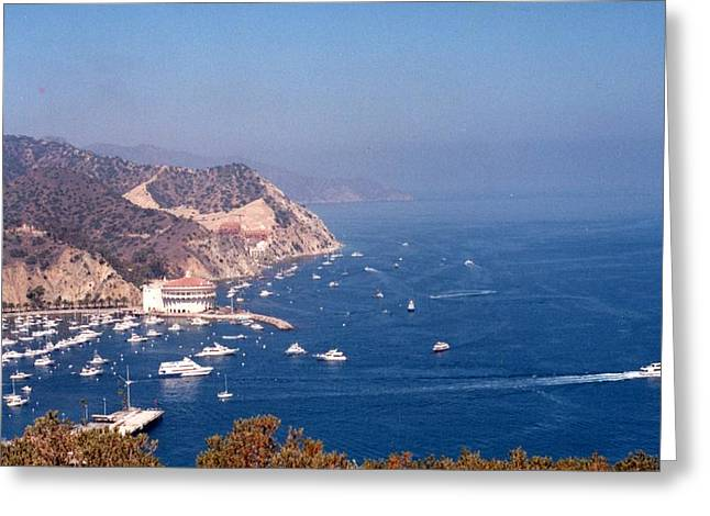 Greeting Card featuring the photograph Catalina Calif............ by Tanya Tanski