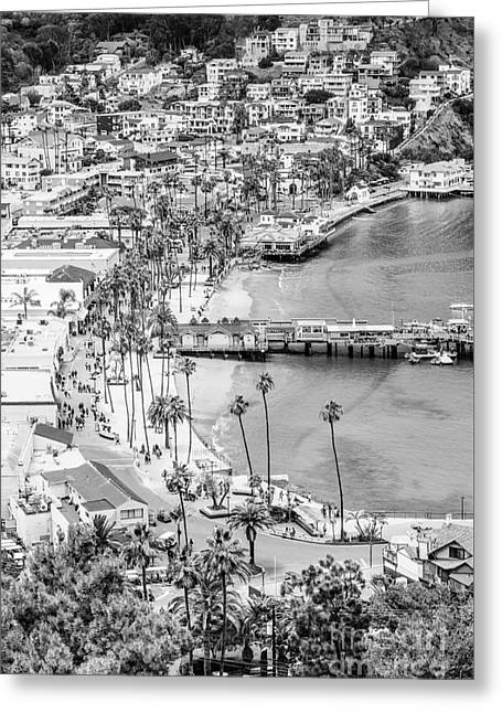 Catalina Island Aerial Black And White Photo Greeting Card by Paul Velgos