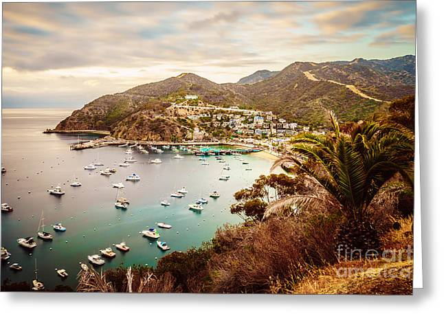 Catalina Island Avalon Bay Picture Greeting Card by Paul Velgos