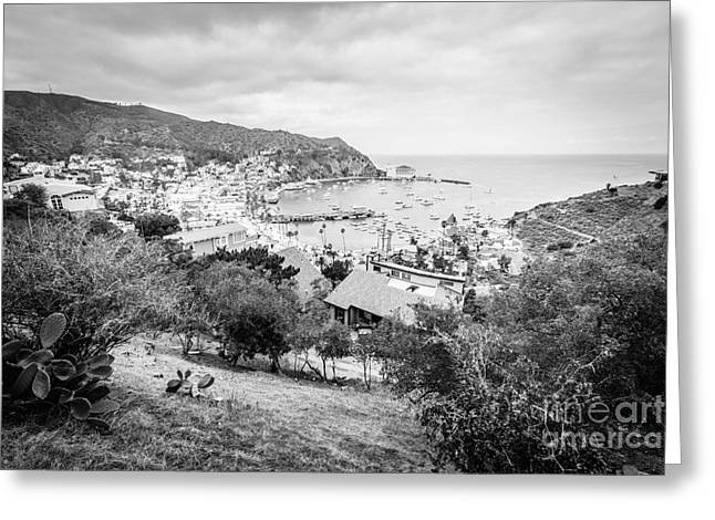 Catalina Island Avalon California Black And White Photo Greeting Card by Paul Velgos