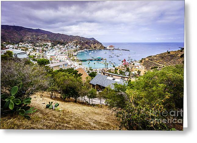 Catalina Island Avalon California From Above Greeting Card by Paul Velgos