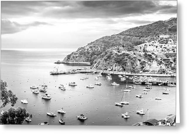 Catalina Island Panoramic Black And White Photo Greeting Card by Paul Velgos