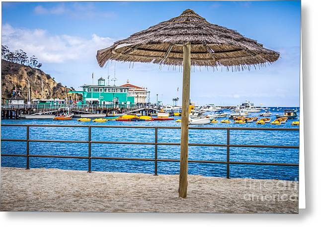 Catalina Island Straw Umbrella Picture Greeting Card by Paul Velgos