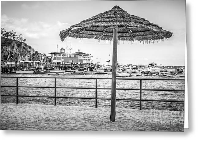 Catalina Island Umbrella In Black And White Greeting Card by Paul Velgos
