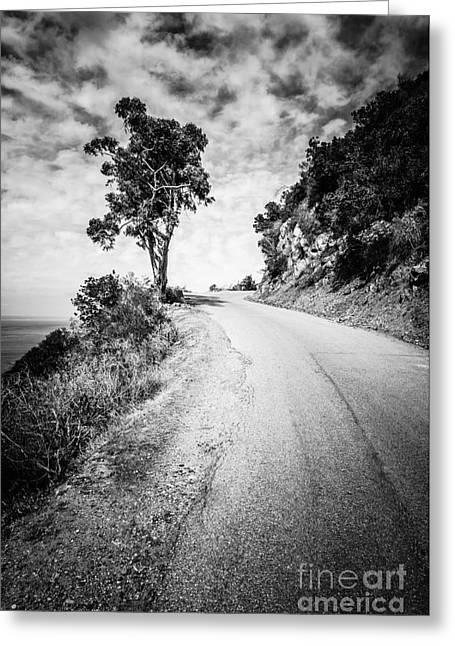 Catalina Island Wrigley Road Black And White Photo Greeting Card