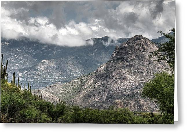 Catalina Mountains Greeting Card by Tam Ryan