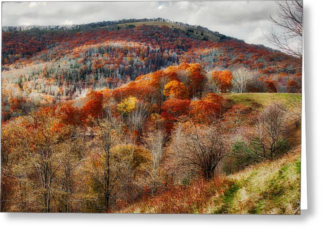 Greeting Card featuring the photograph Cataloochee Fall by Mark Guinn