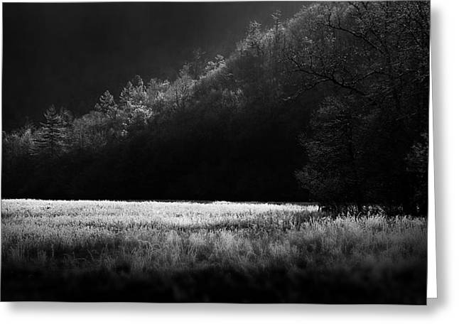 Cataloochee Morning Greeting Card by Gray  Artus
