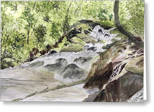 Greeting Card featuring the painting Catawba Falls - A Watercolor Sketch by Joel Deutsch
