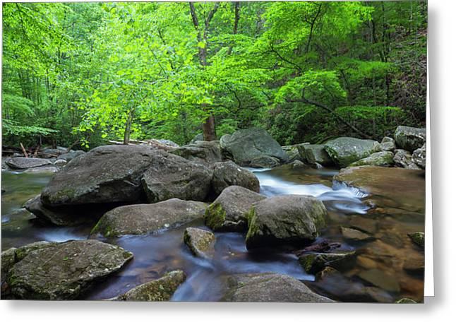 Catawba Stream And Rocks Panorama Greeting Card