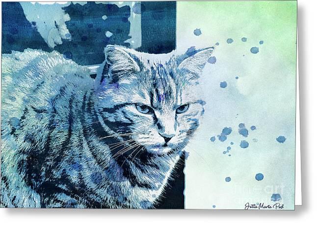 Catbird Seat Greeting Card