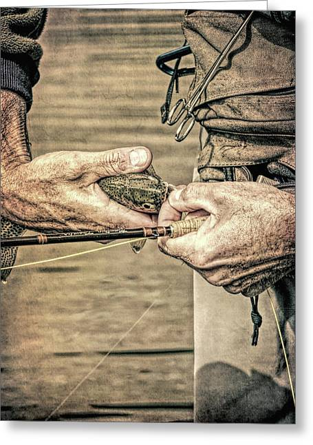 Catch And Release Rainbow Trout Grunge Greeting Card