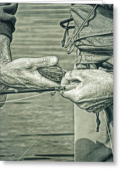 Catch And Release Rainbow Trout In Green Monotone Greeting Card by Jennie Marie Schell