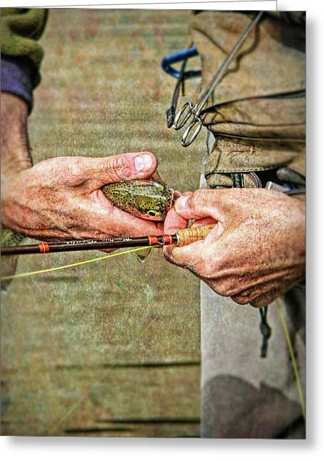 Catch And Release Rainbow Trout Greeting Card by Jennie Marie Schell