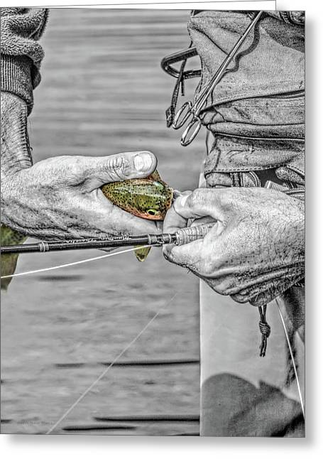 Catch And Release Rainbow Trout Monochrome Select Color Greeting Card by Jennie Marie Schell