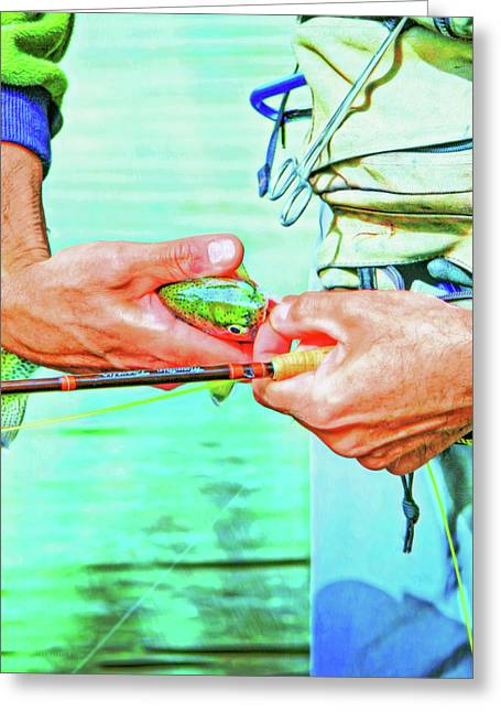 Catch And Release Rainbow Trout Retro Colors Greeting Card by Jennie Marie Schell