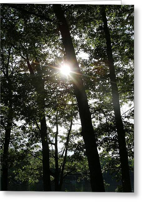 Catch The Sun Greeting Card by Fareeha Khawaja