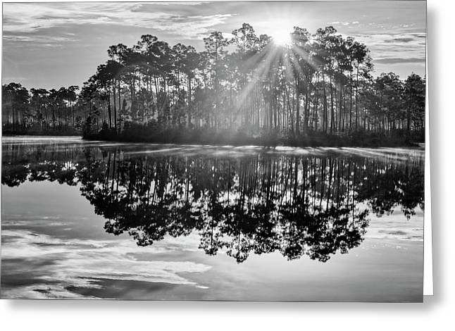 Catch The Sun Greeting Card by Jon Glaser