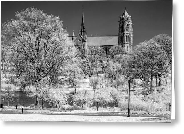 Greeting Card featuring the photograph Cathedral Basilica Of The Sacred Heart Ir by Susan Candelario