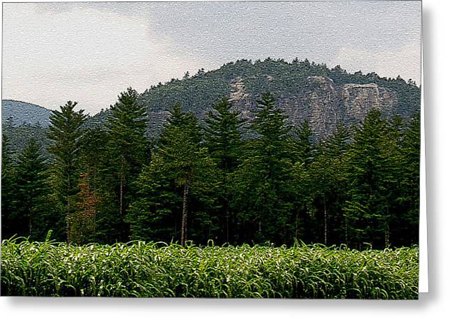 Cathedral Ledge North Conway Nh Greeting Card by Paul Gaj
