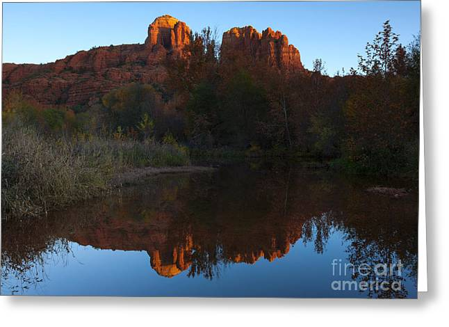 Cathedral Light Greeting Card by Mike Dawson
