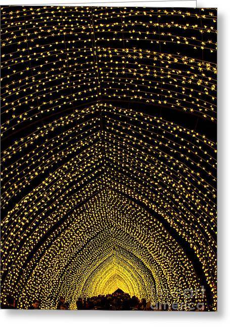 Cathedral Of Light - Vivid Sydney Greeting Card