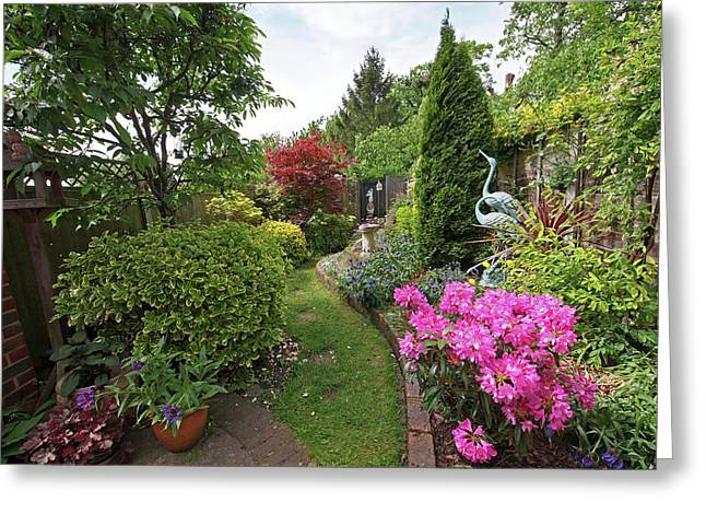 Cathy's Garden - A Little Slice Of England Greeting Card by Gill Billington