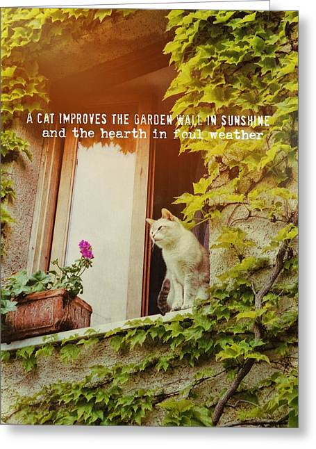 Cats Eye View Quote Greeting Card by JAMART Photography