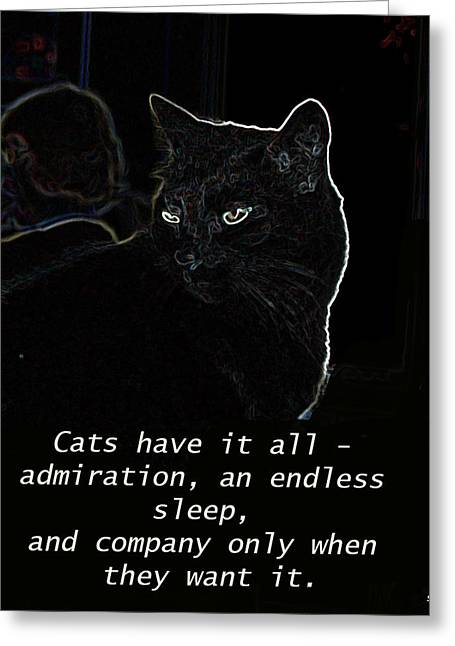 Cats Have It All Greeting Card