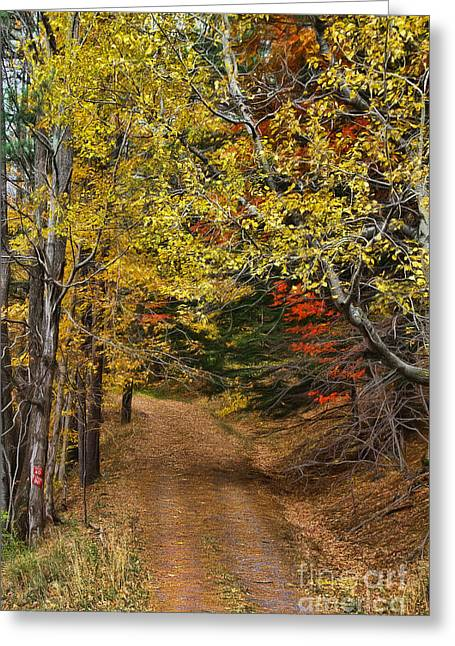 Catskill Color Greeting Card