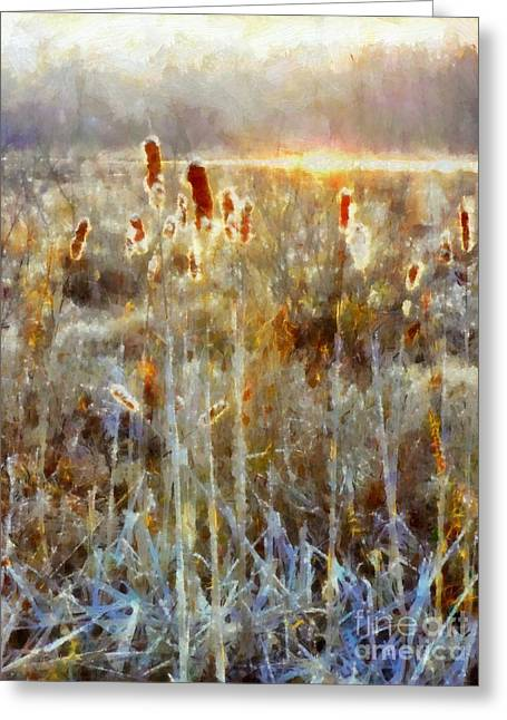 Cattails - Misty Morning - Marsh - Frost Greeting Card by Janine Riley